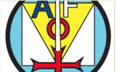 Logo Action Forces Operational AFO