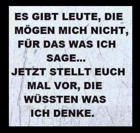 Bezeichnendes Steinacher Posting im Dezember 2016.