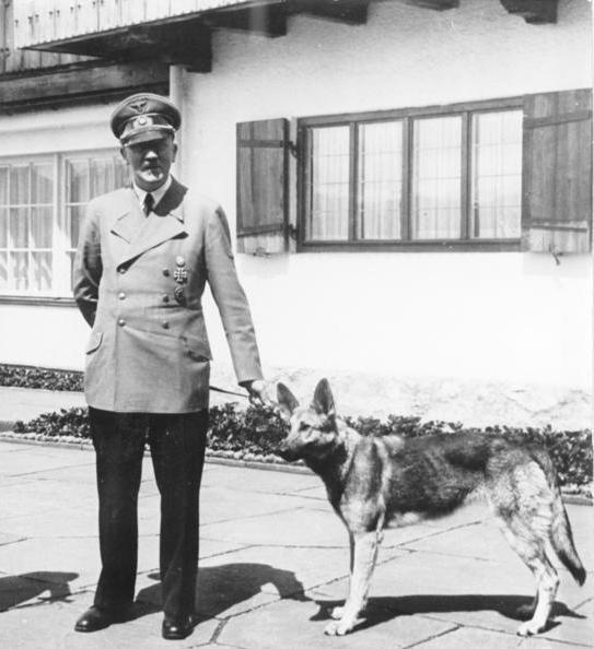 """Schäferhündin """"Blondi"""" mit Herrl am Berghof (Quelle: wikipedia/Bundesarchiv)"""