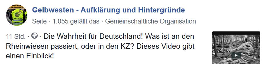 Deutsche Neonazi-Gelbwestenseite