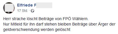 """Elfriede F: """"Herr strache löscht Beiträge von FPÖ Wählern. Nur Mitleid für ihn darf stehen bleiben Beiträge über Ärger der geldverschwendung werden gelöscht"""""""