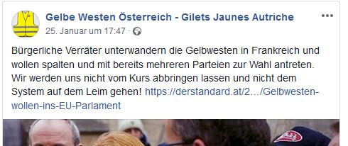 """""""Gelbe Westen Österreich"""": """"Bürgerliche Verräter"""""""