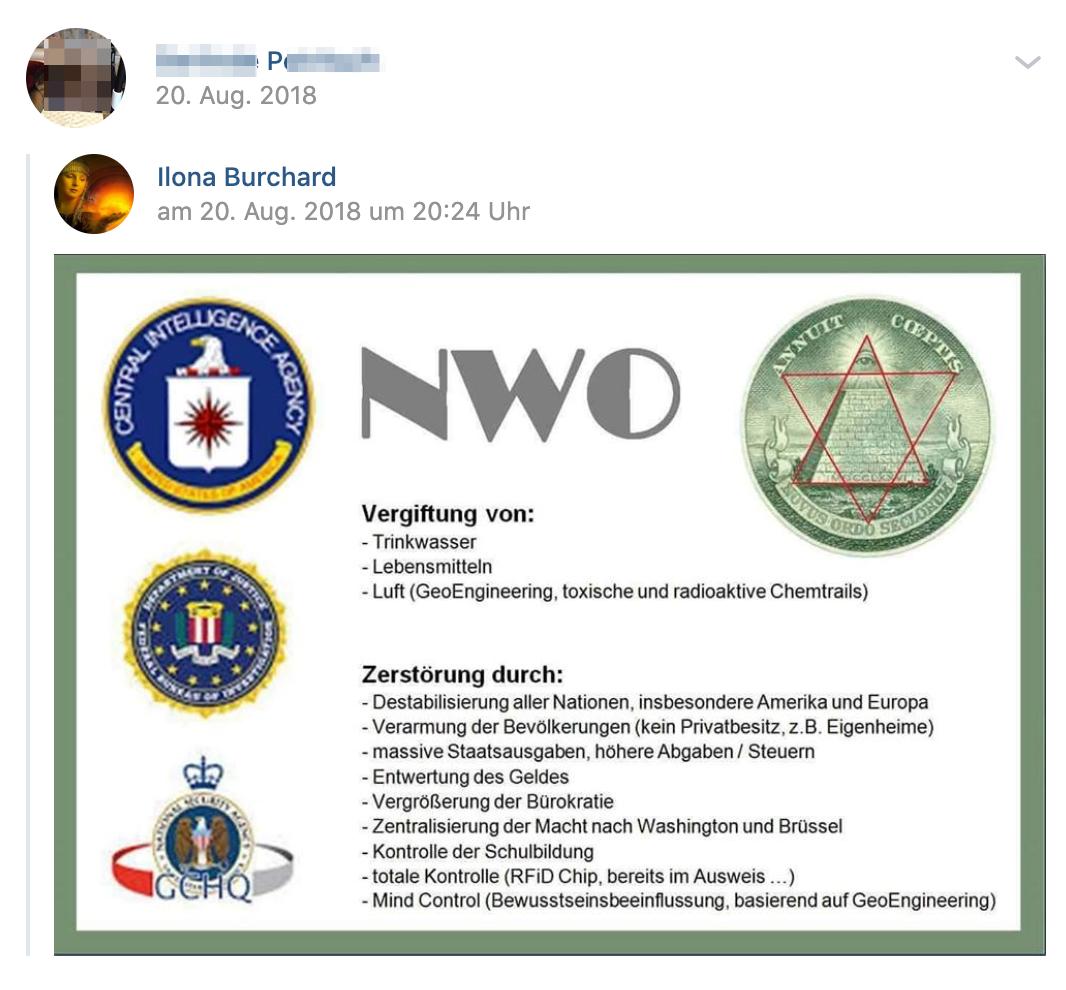 P. teilt Verschwörungspropaganda über NWO (Neue Weltordnung)(Screenshot vk.com)