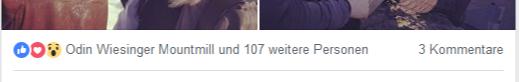 Odin Wiesinger likt Landogart