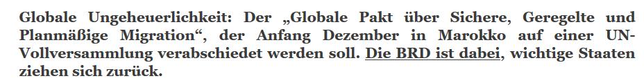 Rechtsextreme Website BRD-Schwindel