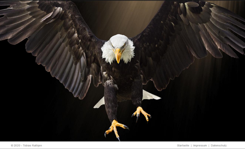 Bild eines Weißkopfseeadlers auf der Website des Hanauer Attentäters