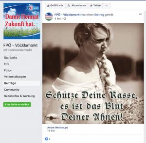 Posting FPÖ-Vöcklamarkt