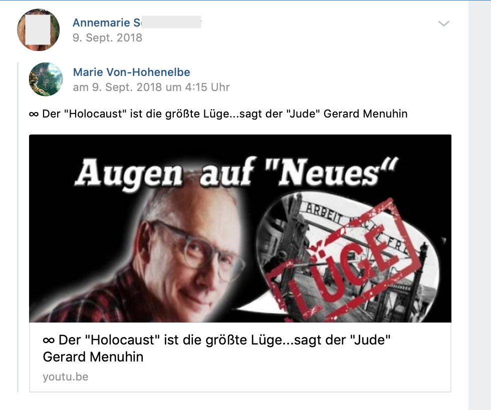 """""""Der 'Holocaust' ist die größte Lüge...sagt der """"Jude"""" Gerard Menuhin"""" (vk.com 9.9.18)"""