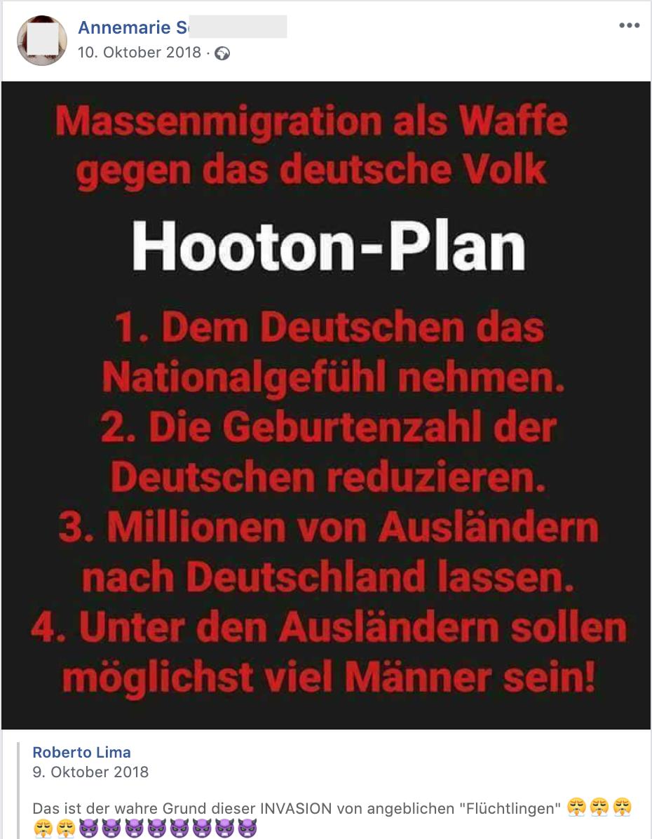 """""""Massenmigration als Waffe gegen das deutsche Volk. Hooton-Plan"""" (FB 10.10.18)"""